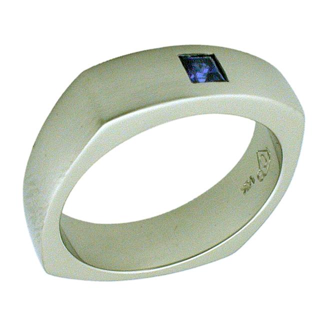 14kt White Gold Princess Cut Sapphire Mens Ring by RGC