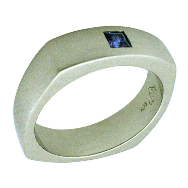 14kt White Gold Princess Cut Sapphire Mens Ring by RGC
